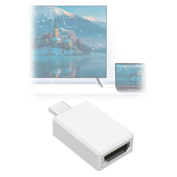 Basix H2 4K Ultra HD USB-C-HDMI Adapter Wit