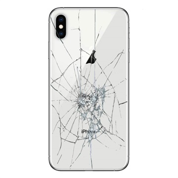 iPhone XS Back Cover Repair Glass Only Wit