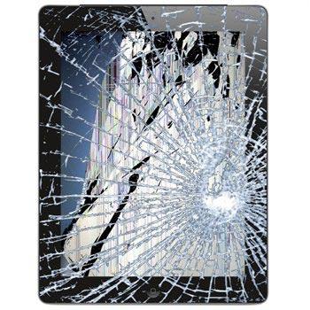 iPad 2 LCD & Touchscreen Reparatie