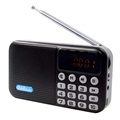 Draagbare Bluetooth DAB Radio met LCD-display